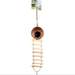 Coconut Bird Toy / Nest